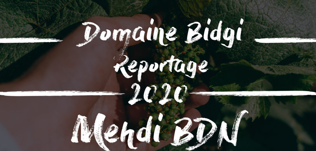 Domaine bidgi Mehdi bdn
